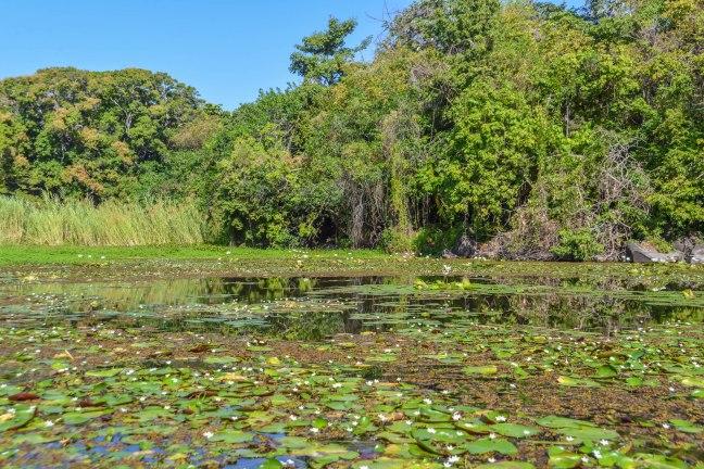 Lake Nicaragua's Asese Bay and Isletas day 4-30