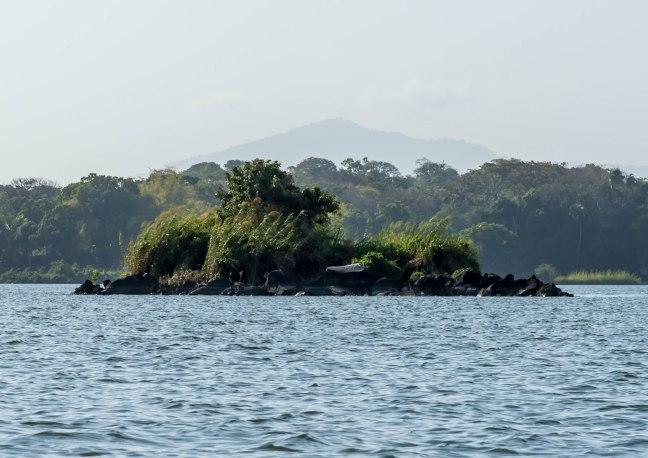 Lake Nicaragua's Asese Bay and Isletas day 4-66