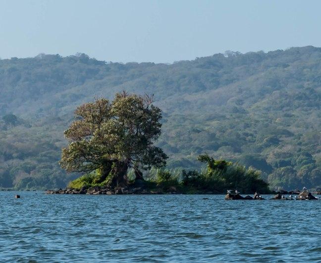 Lake Nicaragua's Asese Bay and Isletas day 4-67
