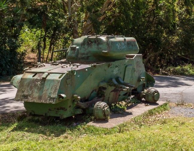 El Jaguar-60