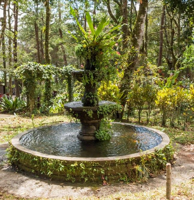 Selva Negra-Managua-33