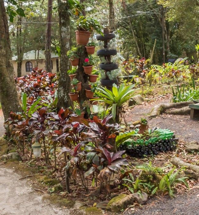 Selva Negra-Managua-34