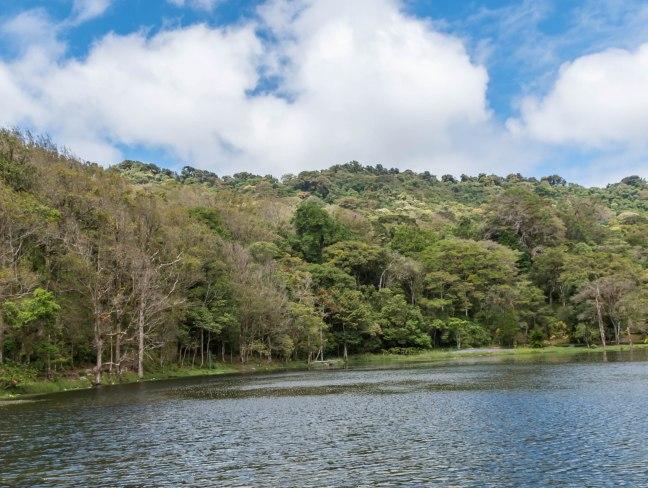 Selva Negra-Managua-39