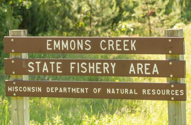 Emmons Creek 6-05-16_.jpg